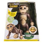 ggttalk-2016-11-17zoomer_chimp