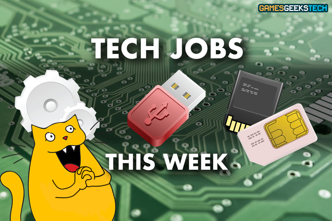GGT Gus the cat looks at tech job openings this week